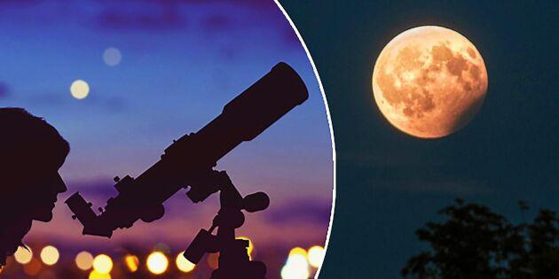 Månförmörkelsen – här kan du se den i Sverige