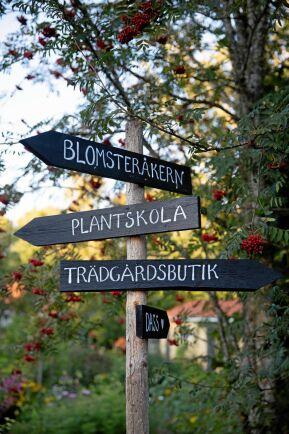 Handmålade skyltar visar besökarna rätt.