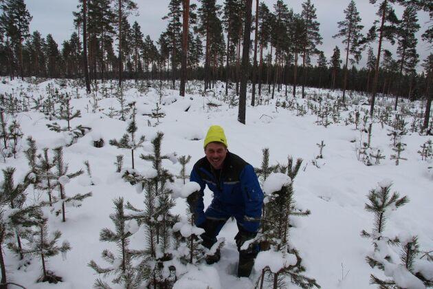 – Skog har kommit naturligt i 10 000 år, medan vi har planterat skog i cirka 100 år. Plantering är en parentes i skogshistorien, säger Hans Olsson.