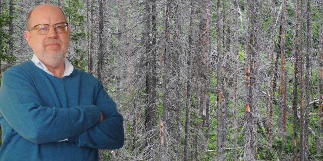 """""""Trädhot ökar osäkerheten om framtiden"""""""