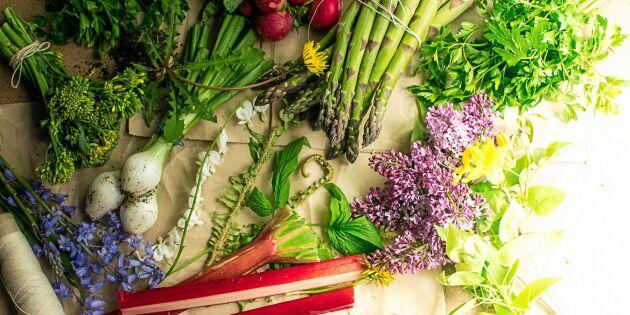 Mat i säsong: 12 svenska råvaror du ska äta i maj