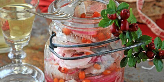 Havtornssill med kryddpeppar