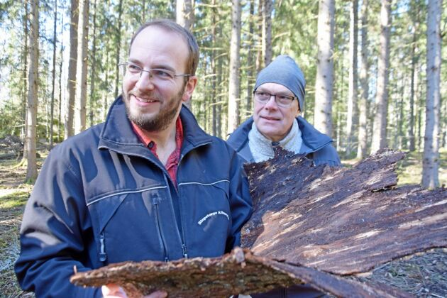 Marcus Augustini berättar att flygbilden överensstämmer väl med verkligheten Mats Åkerman, skogsrådgivare på Hushållningssällskapet, är försiktigt positiv till att använda drönare mer när det gäller att inventera skador på skogen.