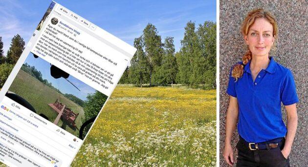 """""""Tillgången på foder är extremt dålig här på Öland och just nu är blicken inställd på gräs, gräs och gräs"""", säger Hanna Karlsson, som driver bloggen Bondbönan."""