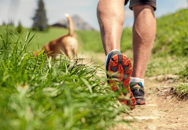 Att gå snabbt kan förbättra din hjärthälsa radkalt. Speciellt om du är över 60 år, visar ny forskning.