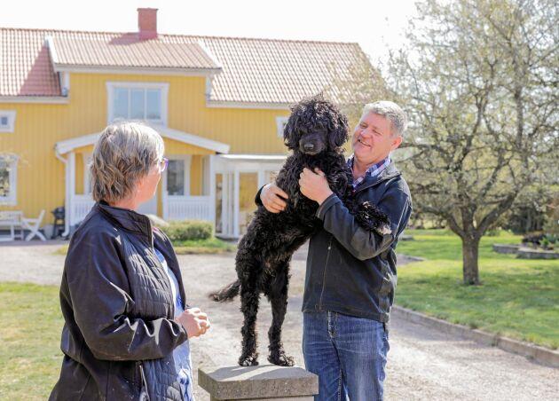 En hund hör förstås gården till och Hjälmsäter är inget undantag. Den portugisiska vattenhunden Siva är en kär familjemedlem hos Susanne och Tomas Hedström.