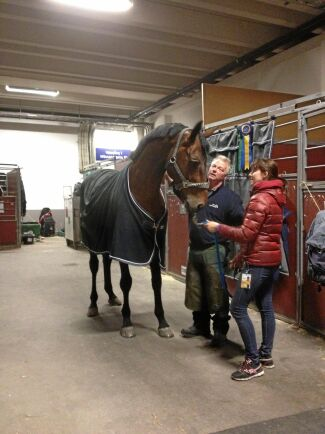 Björn Berg har varit hovslagare åt hästarna inom Göteborgs Polisrytteri i över 30 år.