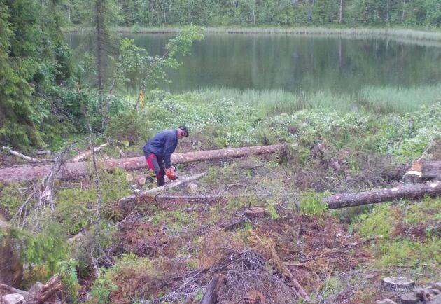 – Inom jord- och skogsbruk finns några av våra farligaste arbetsplatser. Dessutom förekommer mycket ensamarbete, säger Håkan Olsson, stf generaldirektör på Arbetsmiljöverket. Arkivbild.