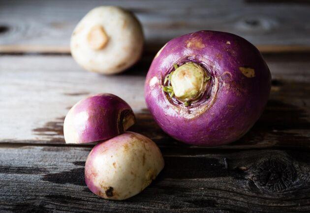 Kålroten är rik på C-vitamin och en godsak till vinterns rätter.