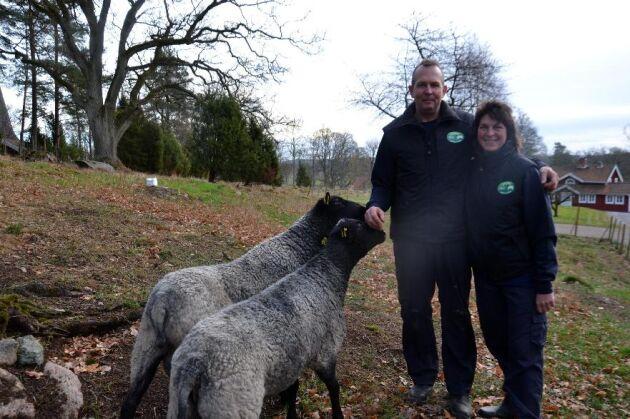 Lawrence och Mia Heathman äger och driver Kulla gård i Nye utanför Vetlanda i Småland som nu blivit Sveriges första embryo- och seminstation för dorperfår.