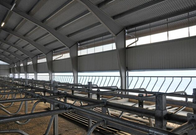 Ljusinsläppet närmast taket består av perforerad plåt. Norrsidan är öppen, men här på den södra långsidan går plåten ner till foderhäcken för att skydda mot vinden.