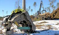 """""""Bryt byråkratiseringen av skogsbruket"""""""
