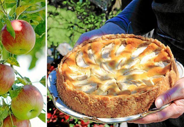Använd gärna en krispig och söt äppelsort till detta underbart goda recept.