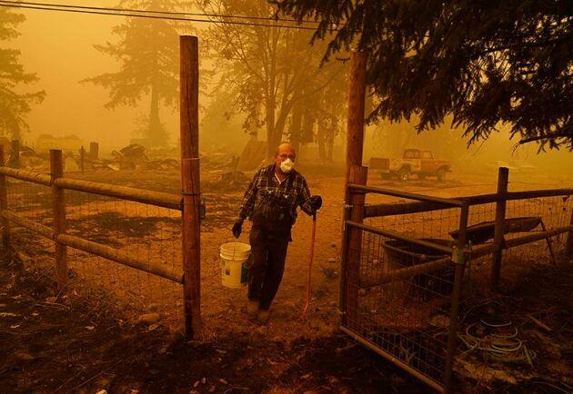 I stort sett ingenting återstår av George Cobles gård efter att branden drog fram i Mill City, Oregon. Nu hoppas man att kallare och fuktigare luft ska dra in och bidra till att dämpa bränderna.