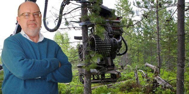 Goda grunder att avverka mer i svenska skogar