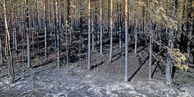 """LRF: """"Fördelningen av brandstödet bör ses över"""""""