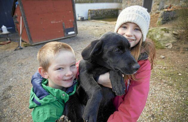 Barnen Vidar, 7 år, och Alice, 9 år, gosar med sin hund.