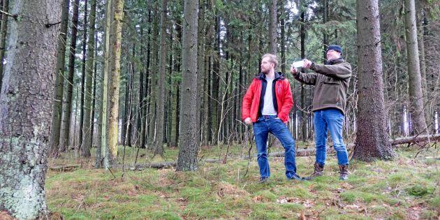 Exakta trädmätningar med ny app
