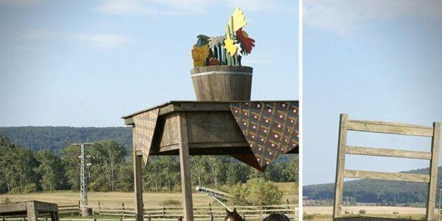 Bonden fick inte bygga ett tak till sina hästar – lösningen han kom på är helt genialisk