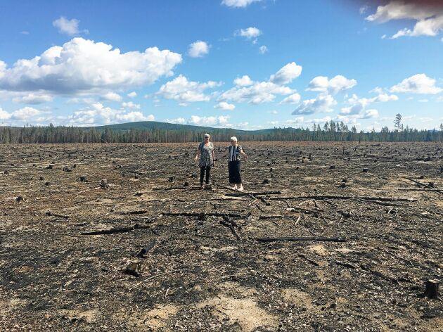 Skogen är helt borta och hela landskapet har förändrats efter branden.