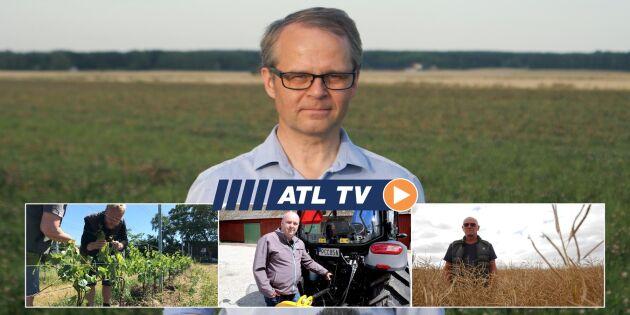 ATL TV: Vi testar kinesisk toppsäljare