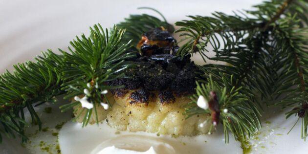 Dansk bonde nobbade världsberömd Michelinrestaurang