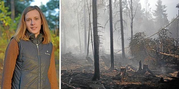Det är stockholmarnas fel att skogen brinner