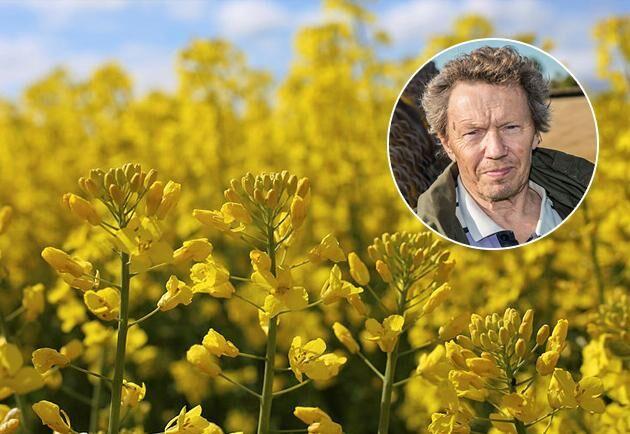 Spannmålsexperten Björn Folkesson.