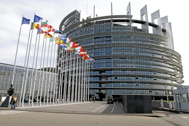 Nu är det klart vilka utskott de nyvalda EU-parlamentarikerna tar plats i.