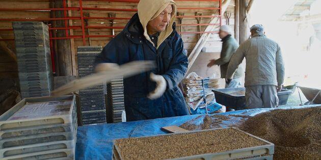 Fukushimas risodlare vill inte ha minskad kontroll