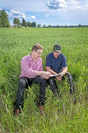 Lönsamheten är bättre med ekologisk produktion konstaterar Jan Lagerroth från LRF Konsult och får medhåll av Fredrik Hallberg från Moholm som själv odlar både konventionellt och ekologiskt.