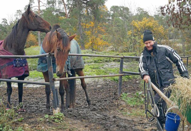 Ulrika Riesterer såg en oslipad diamant i sitt barndomshem men det har varit mycket slit att restaurera en stor gammal gård. Travskolan blir ännu ett ben att stå på - och ett sätt att behålla fler egna hästar.