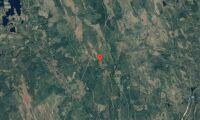 Ägarbyte för skogsfastigheter i Dalarna