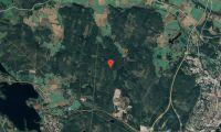 Ny ägare till skogsfastighet i Gävleborg