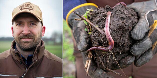 Stor skillnad efter fyra säsonger utan plog