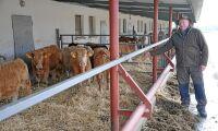 Ungerskt lantbruk går från små- till storskaligt