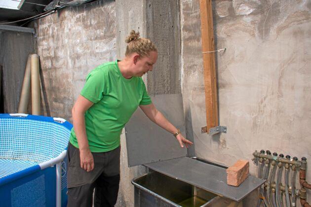 Här pressas vattnet ur. Det mesta är hembyggt och hela första året har det byggts och fixats allteftersom verksamheten rullat på.