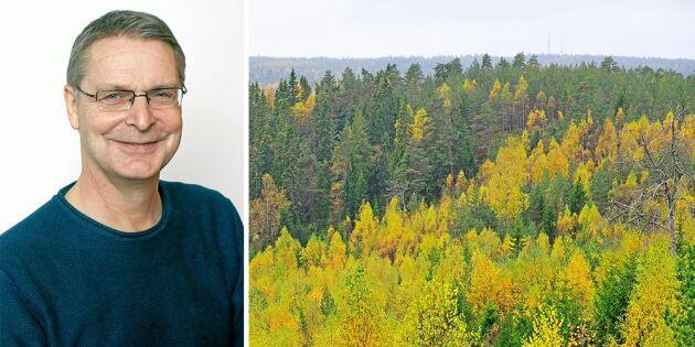 Skogsbruksplanen –ett verktyg för bästa skogsskötseln