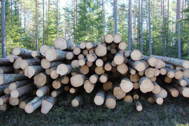 Skogsbolagen vill få tillstånd att köra iväg timmer som ligger vid vägarna.