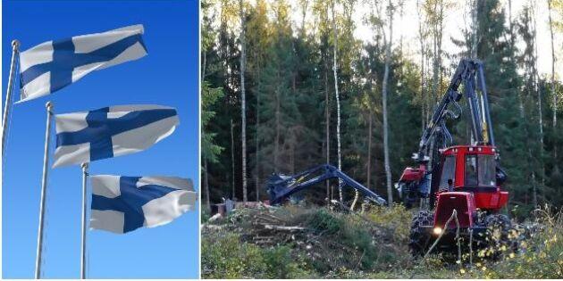 Finsk skogsexpansion stöter på motstånd