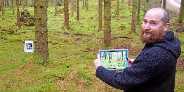 Bättre koll på skogen med smart mätning