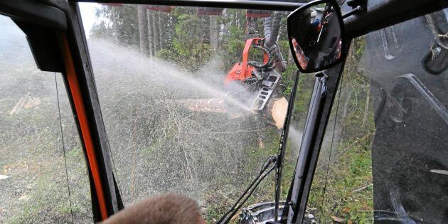 Skogsstyrelsen viker sig inte - trots heta protester