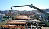 Holmen säljer barkborregran till USA