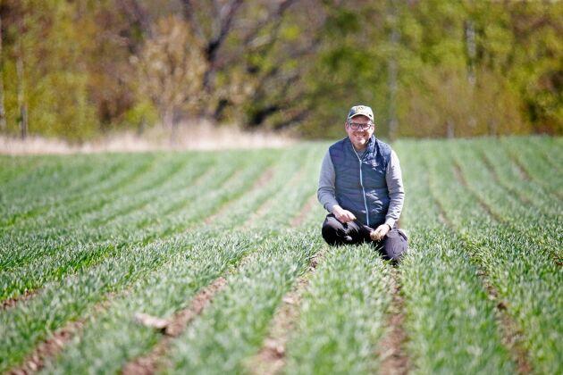 Henrik Hermansson laborerar med olika bredd på såraderna för optimal bekämpning av ogräset i den ekologiska spannmålsodlingen. Såmaskinen har byggts om flera gånger.