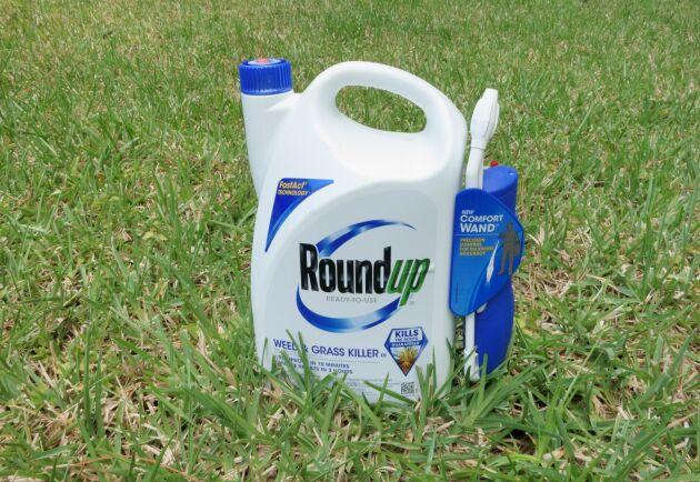 Tyskland kommer att förbjuda glyfosat, som bland annat finns i medlet Roundup, från och med slutet av 2023. Det uppger regeringskällor.