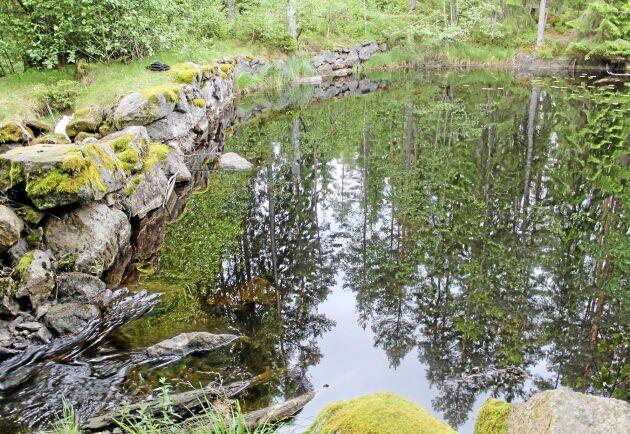 Sjön Bergvattnet, Laxå kommun.