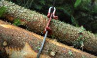 Mellanskog höjer priset på massaved