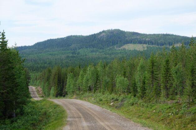 Om Skogsstyrelsen inte ger tillstånd för föryngringsavverkning på grund av höga naturvärden, har skogsbrukaren rätt till ersättning från staten motsvarande 125 procent av skogens marknadsvärde, enligt en dom från Mark- och miljööverdomstolen som kom i maj 2020.