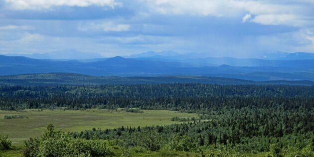 Arealen på naturreservat ökar snabbt
