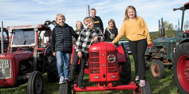 Traktorfest i Småland – 9 veterantraktorer och deras stolta ägare